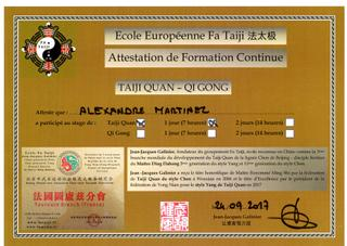 école européenne: Fa taiji - formation continue