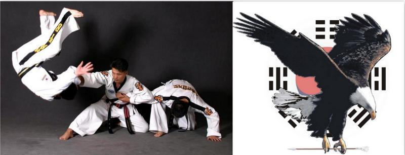 Hapkido eagle 1